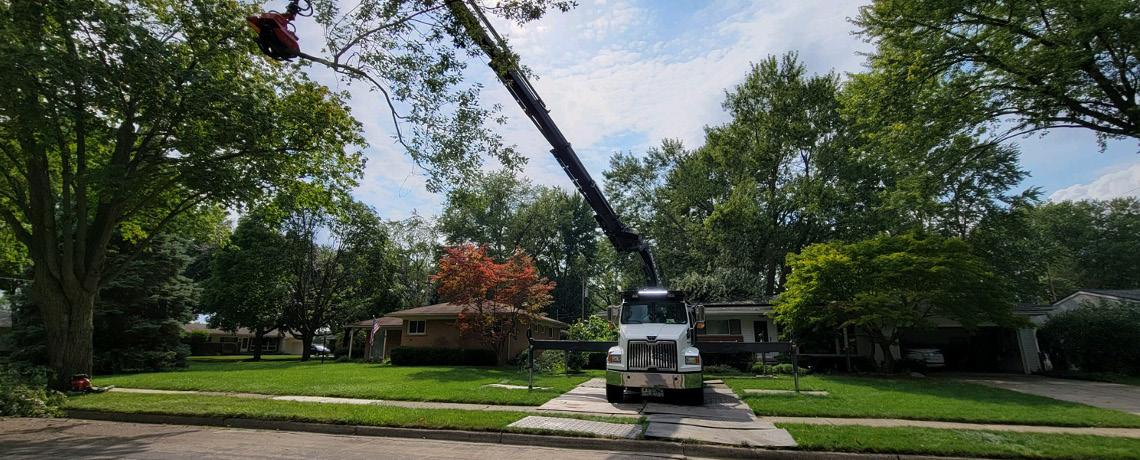 Large Crane 2021_